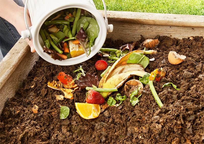 Tái tạo chất thải hữu cơ thành nguồn phân bón